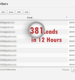 Who Else Wants 381 Leads In Just 12 Hours?